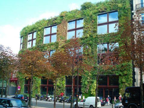 Own Vertical Garden